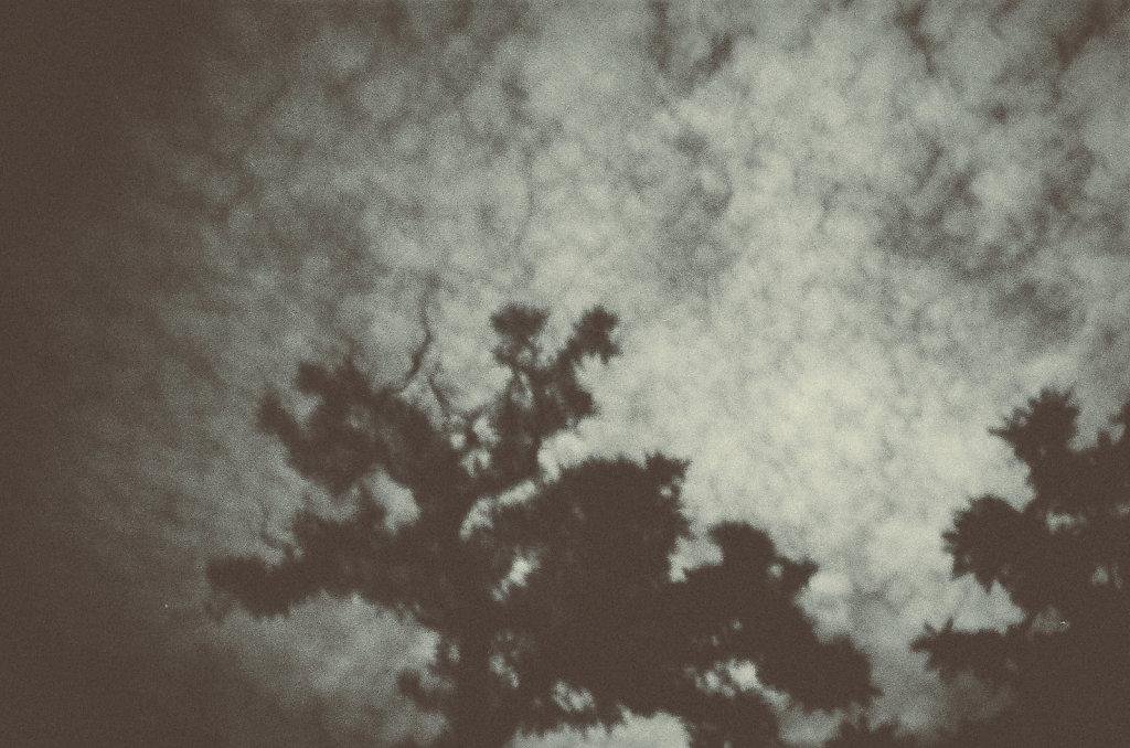 03-even-our-shadows.jpg